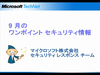 20080111_totem